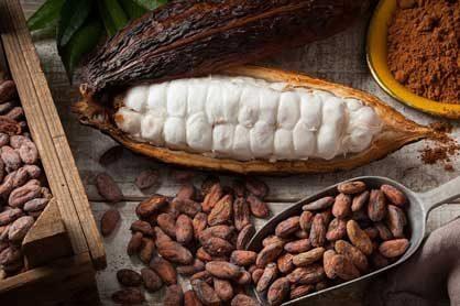 Čokoláda vyrobená procesom Bean to Bar